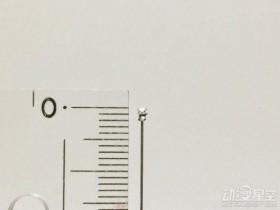 日本大神自制微型粘土:2mm超小熊猫 细节保留完美